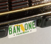 Bandit Firebird Trans Am rear with BAN-ONE Florida license plate
